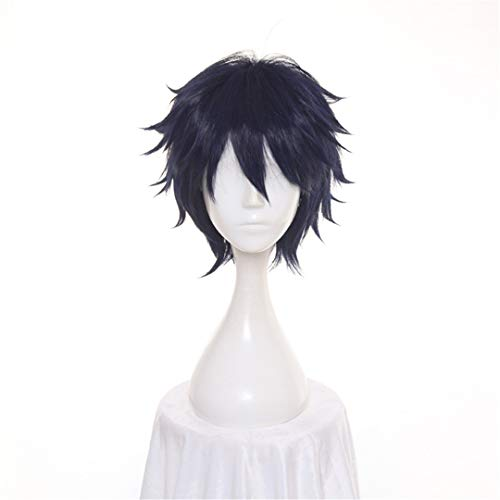 30Cm Ao No Blue Exorcist Okumura Rin FAIRY TAIL Blue Short Fluffy Layered Synthetic Hair Cosplay Wig Full Hair Blue 12inches -
