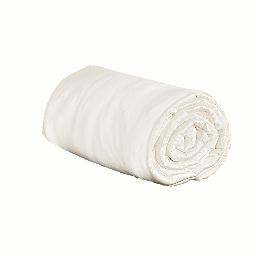 Ivory Silk Quilt - Lilysilk Silk Comforter Natural Silk Covered 19 Momme Summer Chinese Bedding Dreamland Twin Size, Ivory