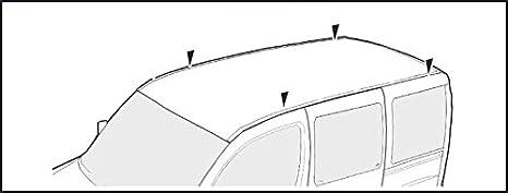 VDP kompatibel mit Renault Trafic ab 2014 Dachtr/äger XL Pro 200 2 Stangen 200kg Lastentr/äger