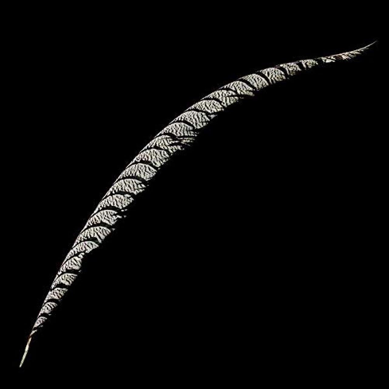 概念誇りに思う市場【ノーブランド品】羽根  装飾用 羽根 DIY ジュエリー 工芸品 ヘアアクセサリー バッグ 帽子 工芸品 クラフト ソーイング デコレーション用 12?18cm (ディープブルー)