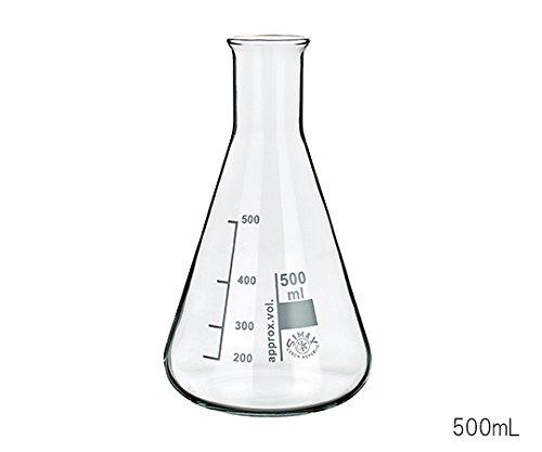 SIMAX3-6009-10三角フラスコ5000mL B07BD2WKML