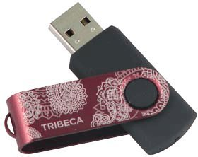 (Swivel Style USB Drive 4GB - Paisley - Cranberry)