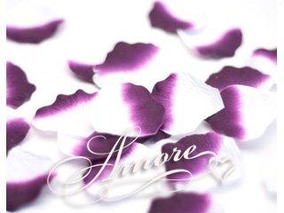 1000 Wedding Silk Rose Petals Luxor-Eggplant and White