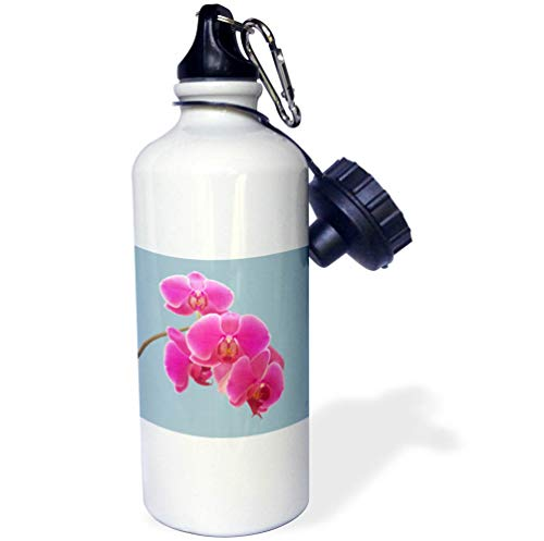 Orchid Photograph - 3dRose Natalie Paskell - Flora and Fauna - Pink Orchids Photograph in Paint Effect. - 21 oz Sports Water Bottle (wb_293377_1)
