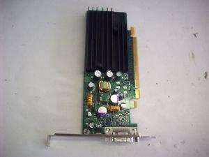 Nvidia model p383