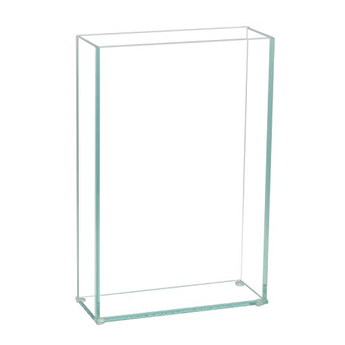 8 Vase Square (Royal Imports Flower Glass Vase Decorative Centerpiece for Home or Wedding Flat Rectangle Plate Glass, 8