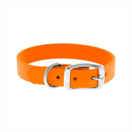the-perfect-leash-perfect-collar-1-inch-wide-by-16-to-18-inch-long-polyurethane-dog-collar-orange