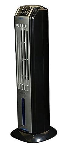 NewAir AF-310 Indoor/Outdoor Portable Evaporative Air Cooler by NewAir (Evaporative Cooler Portable)