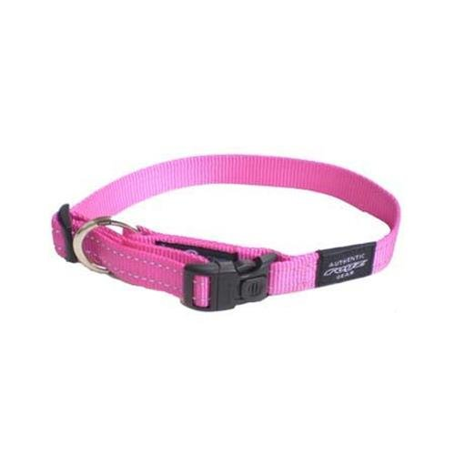 ROGZ Reflective Dog Collar for Large Dogs, Adjustable from 1