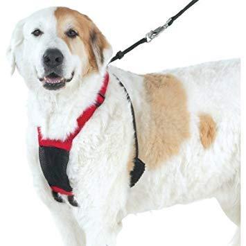 Yuppie Puppy Anti-Pull Mesh Harness, Multiple Sizes (Medium, Red)