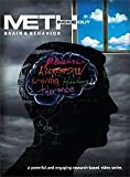 Meth Inside Out : Brain & Behavior