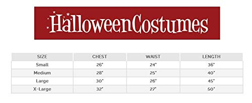 California Costumes Susan B. Anthony/Harriet Tubman Girl Costume, One Color, Large -