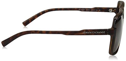 sol Exchange para A Hombres X Armani de hombre inyectadas Gafas qEY16Ew