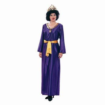 Queen Esther Adult Renaissance Costume (Pirate Queen Costume)