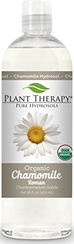 Plant Therapy Organic Roman Chamomile Hydrosol. (Flower Water, Floral Water, Hydrolats, Distillates) Bi-Product of Essential Oils. 16 oz. - Distillate Water