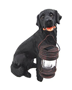 Black Labrador Dog Sitting Down With Lantern Solar Light in Mouth by Onlinez Trading