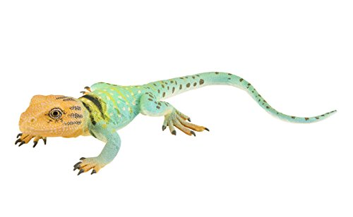 Safari Ltd. Collared Lizard XL - Realistic Hand Painted Toy Figurine Model - Quality Construction from Phthalate, Lead and BPA Free Materials - for Ages 3 and Up