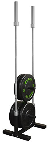 Rage Fitness Olympic Weight Plate Rack and Barbell Holder, Holds 2 Barbells up to 2 in Diameter, Bumper Tree Stand