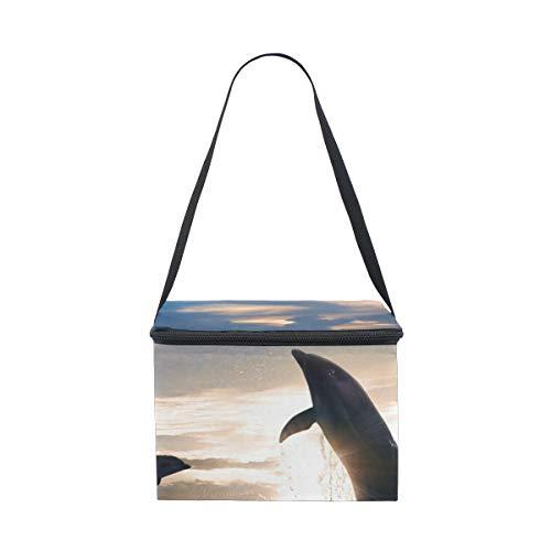 Delfines Almuerzo Correa Hombro Comida Campestre Fresco Para El Del Sol Para Fiambrera Bolsa La Saltan La 2 Puesta Más De R0xxX