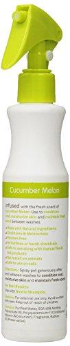 Image of Nootie- Daily Spritz, Pet Conditioning Spray, 1 Unit, 8 oz, Cucumber Melon