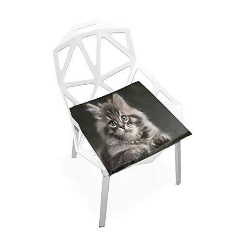 Seat Cushion Long-Haired Gray Kitten Chair Cushion Offices Butt Chair Pads Square Wheelchairs Mat for Computer