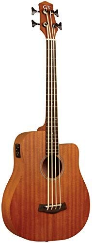 Gold Tone Mbass-25 25-Inch Scale MicroBass Guitar