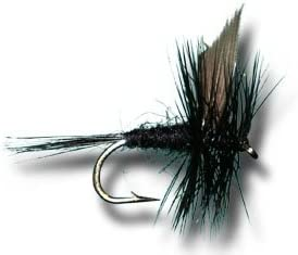 Wet Flies Black Gnat Gilchrist Fly 6 pieces of a size