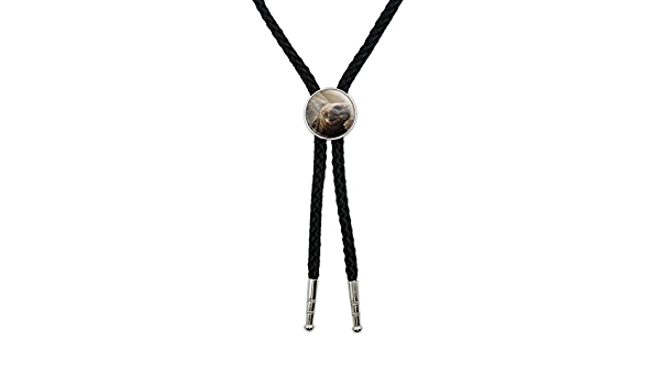 Turtle Western Southwest Cowboy Necktie Bow Bolo Tie Graphics and More Tortoise