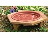 Cheap Songbird Essentials SE573 Mini Garden Bird Bath Clay Tray (Set of 1)
