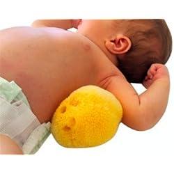 Esponja Natural de Mar de SEDA ultra suave, súper absorbente, hipoalergénica y exfoliante, ideal para el baño de toda la familia o para aplicar cosmeticos. Previene malos olores, mohos y bacterias. 8 a 10 centímetros aprox. Recuerdos regalo Baby Shower. Sponge Silk.