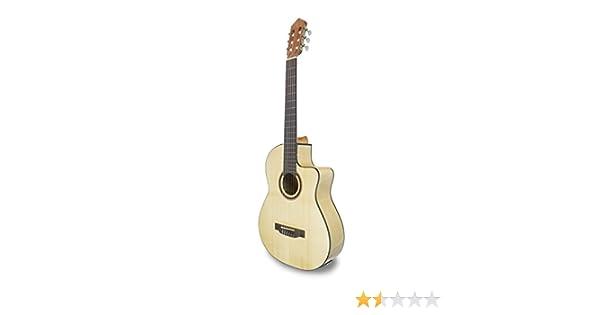 APC Instruments 1F CW - Guitarra Pick Up Flamenca APC: Amazon.es ...