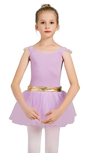 DANSHOW Girls'Tank Skirt Leotards for Ballet Dance with Tutu, Gold Waist and Flying Sleeves(2-4,purple)]()