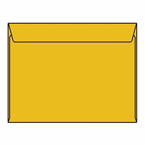 Open Side Booklet Envelopes, 10