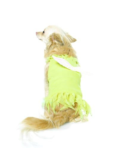 2Pc Peter Pan's Tinkerbell Cute Dog Holiday Pet Costume (Yellow;Small), My Pet Supplies