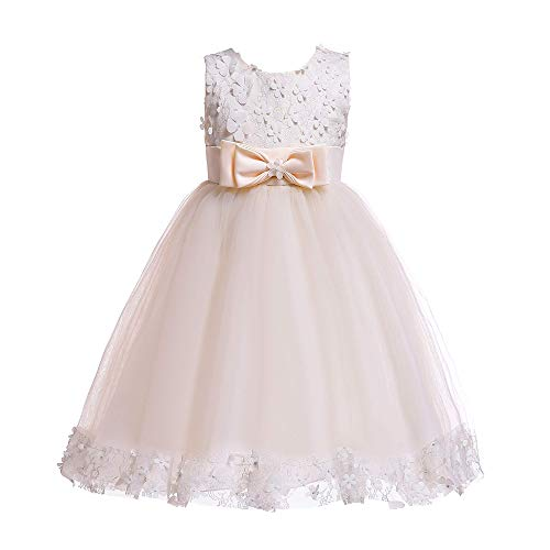 Weileenice 1-14 Years Big/Little Girl Flower Lace A-line Party Dresses (Suggest 13-14 Years/Label 18, Light Champagne) (Girls Party Dresses Size 14)