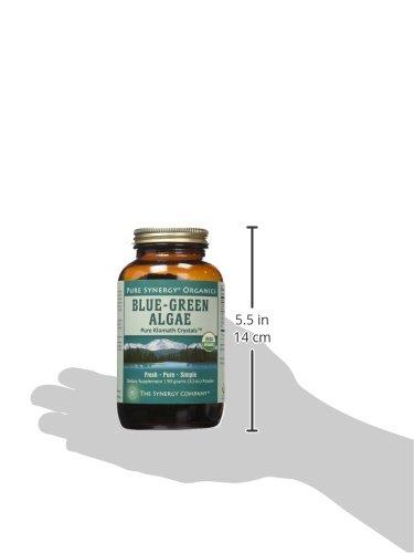 Pure Synergy USDA Organic Klamath Blue Green Algae Powder (3.2 oz) Fully Tested, Non-GMO by Pure Synergy (Image #10)
