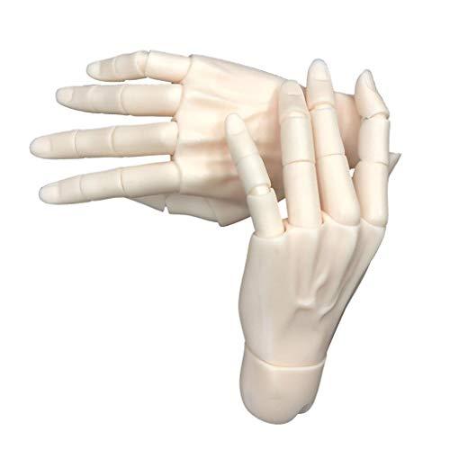 P Prettyia 15関節ハンド 柔軟 1/3BJD男性人形用 手模型 ドールメイキング 全2カラー - 普通肌