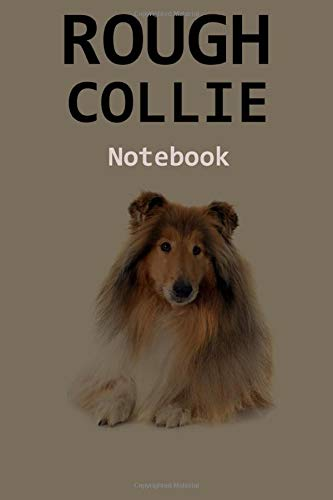 Rough Collie Notebook: 120 Page Unlined (6 x 9 inches) Rough Collie Journal with More Rough Collies Inside! 1
