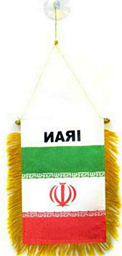 florance jones Iran Mini Flag 4x6 Window Banner w/Suction Cup   Model FLG - 5539 ()