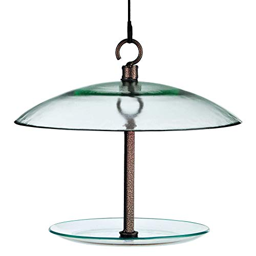 Mosaic Birds Wide, Clear 360 Degree Petite Seed Cylinder Feeder, M392-200, 11 inch (Cylinder Bird Feeder)