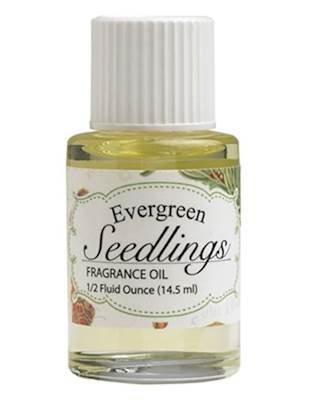Evergreen SEEDLINGS Hillhouse Naturals Refresher Fragrance Oil 0.5 Ounce