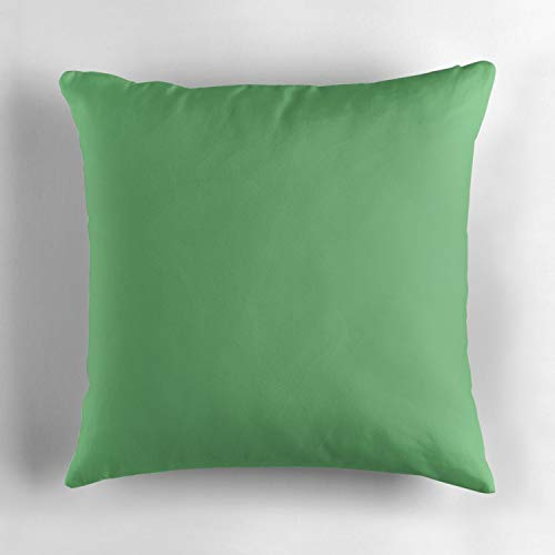 Wbsdfken Iguana Green Luxury Throw Pillow Cover with Hidden Zipper for Bedroom, Living Room, Sofa, Couch & Bed 18x18 inch