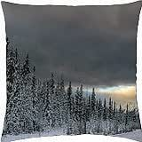 road in a wonderful winter scene - Throw Pillow Cover Case (18