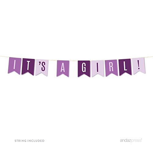 Andaz Press Signature Lavender, Plum, Royal Purple Girl Baby Shower Party Collection, Hanging Pennant Banner, Its a Girl!, Approx. 6-Feet, 1-Set