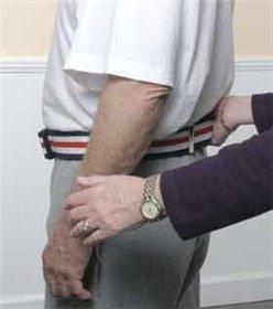 - Alimed Gait Belt - Pinstripe with Plastic Buckle, 54
