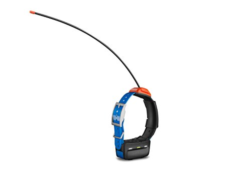 Garmin T5 GPS Dog Collar (Garmin Gps Dog Tracking System)