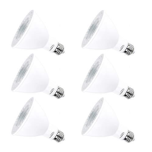 Par30 LED Bulbs, Tanbridge High Power lamp Beads, Indoor and Outdoor, LED Flood Light Bulb, 12W (120W Equivalent), E26 Base, 5000K Daylight, 1050lm, 60