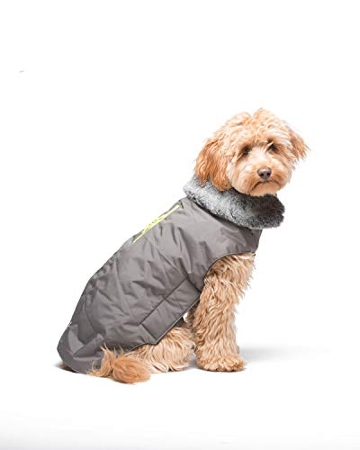 Dog Gone Smart Tamarack Coat Jacket, Grey W/Yellow Zipper, 14