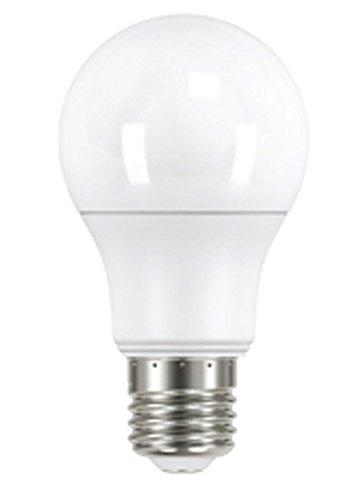 Led Light Bulbs 230V in Florida - 6