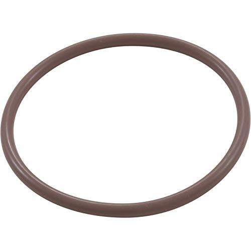 Waterway Plastics 806105129765 Off-line/Inline Chlorinator Lid O-Ring ()